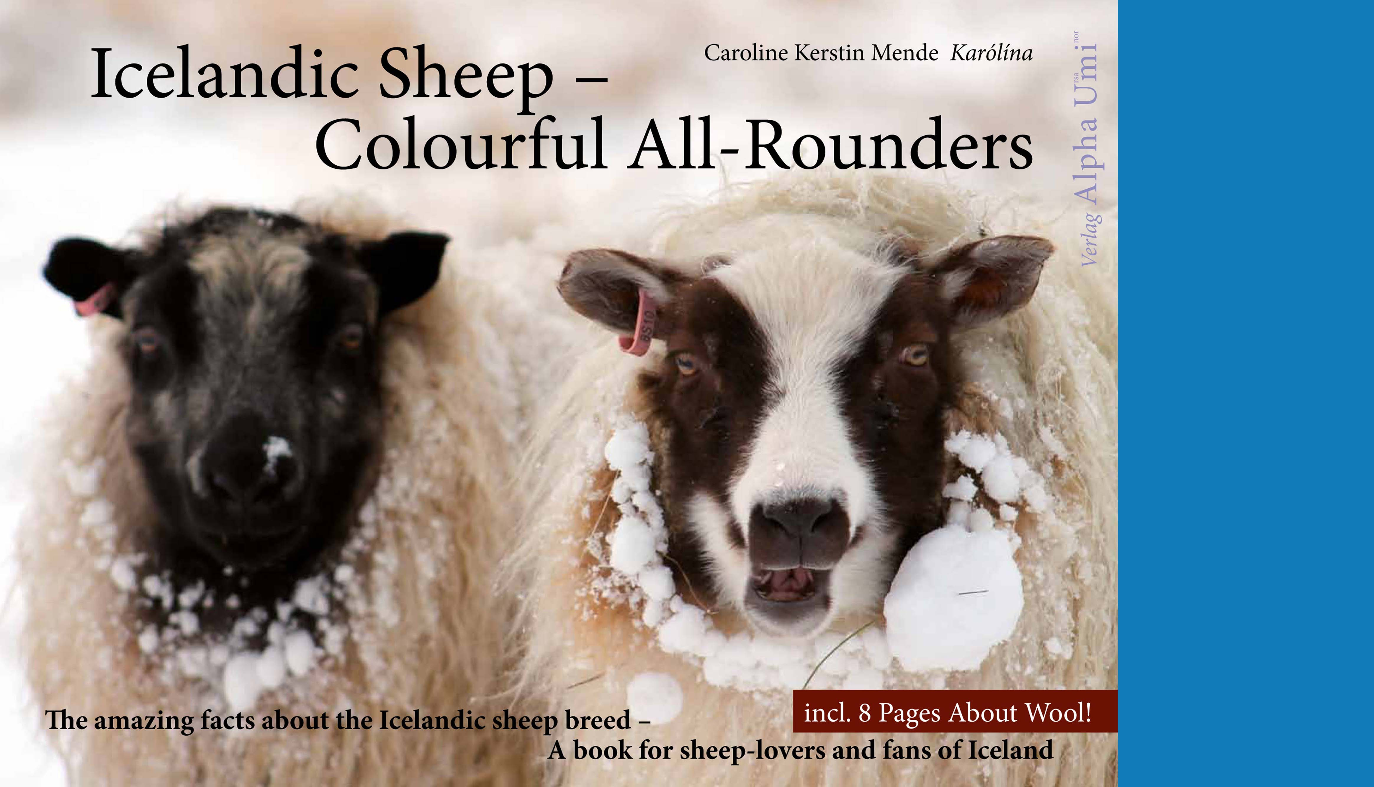 Internet blau 1509 Icelandic sheep Cover
